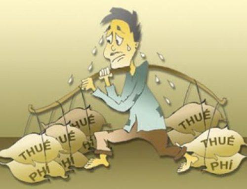 Thuế: Gánh nặng của doanh nghiệp?
